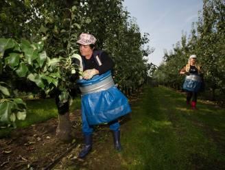 Eén op de zes arbeidskrachten in België heeft andere nationaliteit