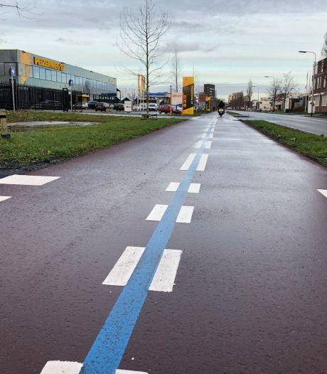 Mysterie: waarvoor zijn de blauwe lijnen op het fietspad van de Peizerweg?