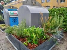 Experiment met containertuintjes start in Bredase wijk Brabantpark: 'Gaaf'