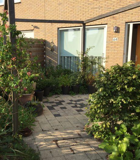 Volgroeide tuin van Annette geeft veel plezier: 'Natuur verhoogt geluksgevoel, juist nu hebben we dat nodig'