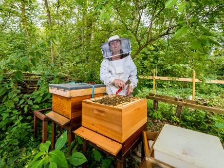 Imker Judith in actie voor meer bloemen in haar wijk: goed voor de bijen en 'leuk om naar te kijken'