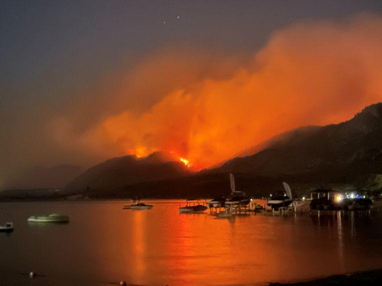 Een bosbrand nabij Osoyoos, British Columbia, Canada. Beeld @DylanGaleas via REUTERS
