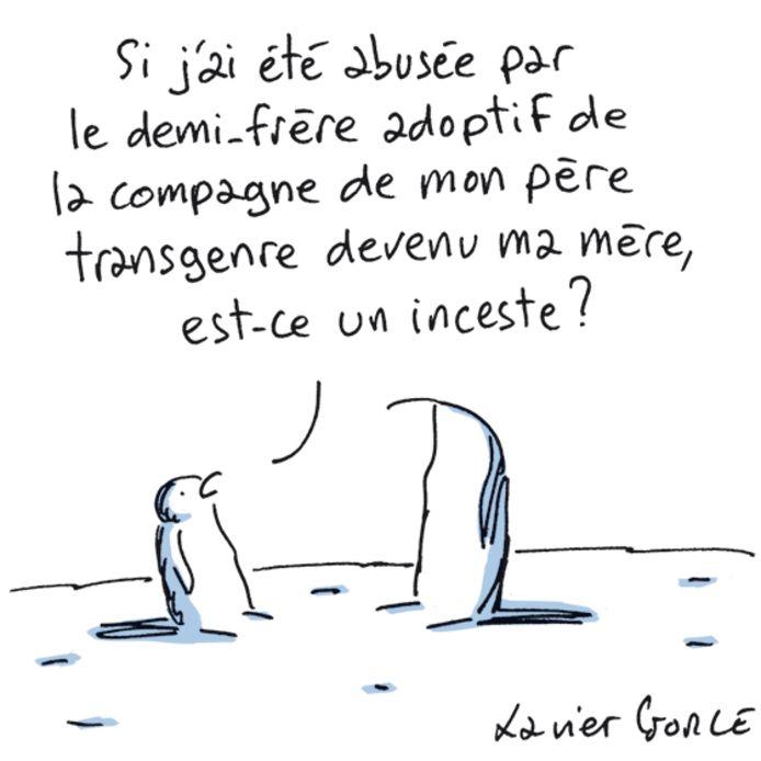 Le dessin de Xavier Gource publié dans le journal Le Monde, puis supprimé