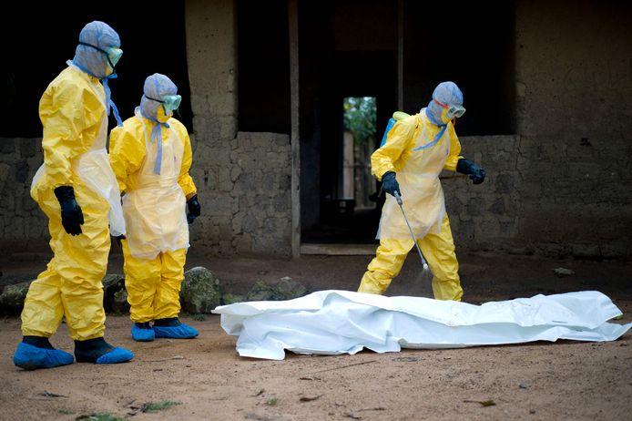 In totaal zijn 16 besmettingen vastgesteld, en 12 sterfgevallen.