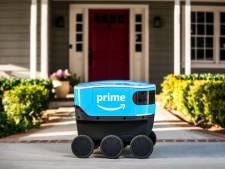 Zelfrijdende robot bezorgt pakketjes aan huis