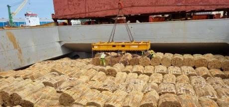 Handelaar Girbe waagt miljoenengok met onverzekerde lading uit China: 'Lig je wel van wakker'