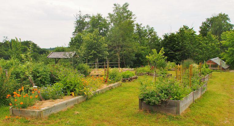 De fruitgaard van Saint-Pierre-de-Frugie. Er is nog plaats voor vijftig mensen in het dorp.  Beeld Imco Lanting