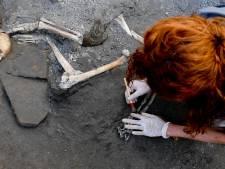 Découverte de cinq nouveaux squelettes à Pompei