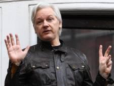 Un rapporteur de l'ONU demande à Trump de gracier Julian Assange, le fondateur de Wikileaks