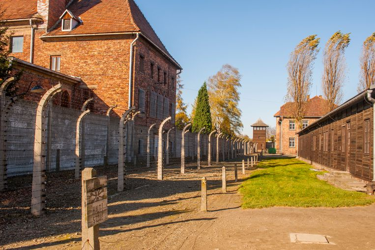 Auschwitz Beeld LightRocket via Getty Images