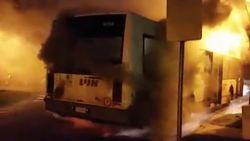 Brand verwoest bus van De Lijn in Machelen