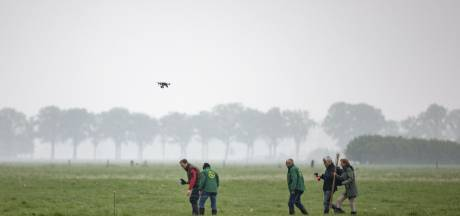CDA Tubbergen wil jagers inzetten om grutto te beschermen