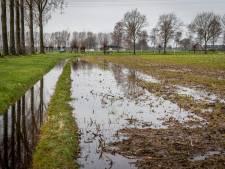 Teeltwensen van boeren niet meer leidend bij waterbeheer door Waterschappen