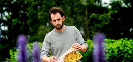 Daan moet zijn miljoenen bijen op de Veluwe verhuizen: 'We worden als boeman neergezet'