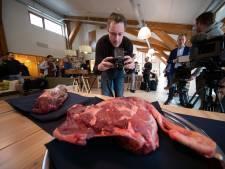 Ontweiden edelherten Oostvaardersplassen lastiger dan verwacht: vleesprijzen omhoog
