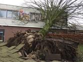 Storm veroorzaakt ook in Berkel-Enschot veel schade