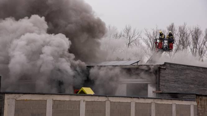Hevige brand in opslagplaats met voertuigen: negen wagens van rallyrijder vernield