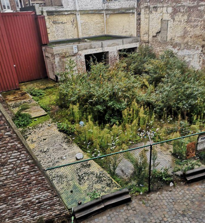 Ces habitants d'Outremeuse espèrent faire de ce site de 400m2 un jardin collectif.