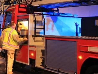 Vrachtwagen richt ravage aan op Klein Engeland