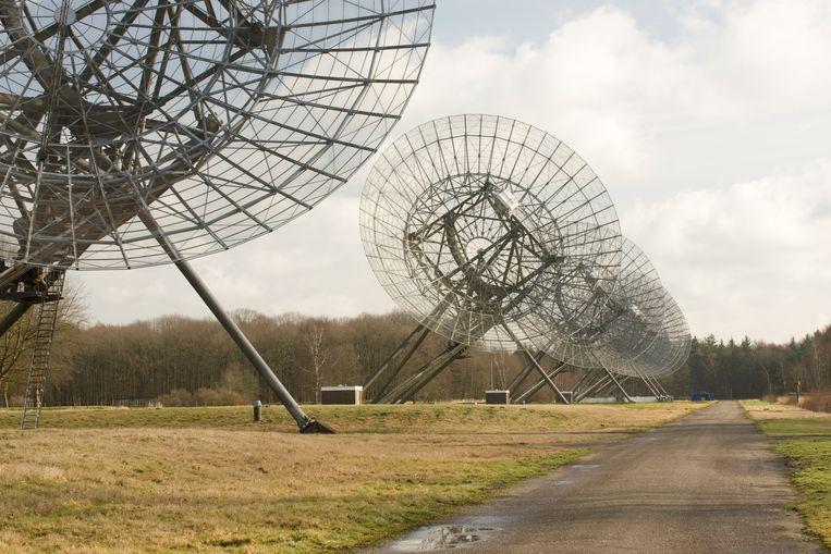 Enkele van de 14 parabolische antennes in Westerbork die samen een telescoop met een diameter van bijna drie kilometer nabootsen. Beeld BELGAIMAGE