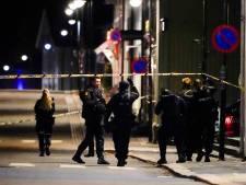 Ce que l'on sait sur l'auteur présumé de l'attaque à l'arc en Norvège, un Danois converti à l'islam soupçonné de radicalisation