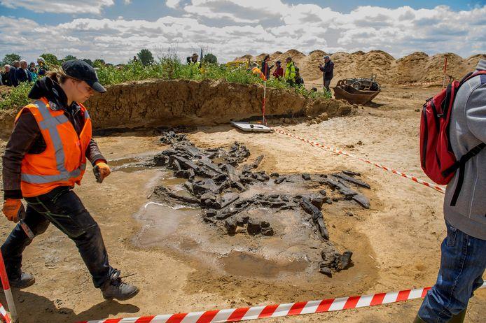 De zandafgraving bij  Alphen is een snoepwinkel voor archeologen.