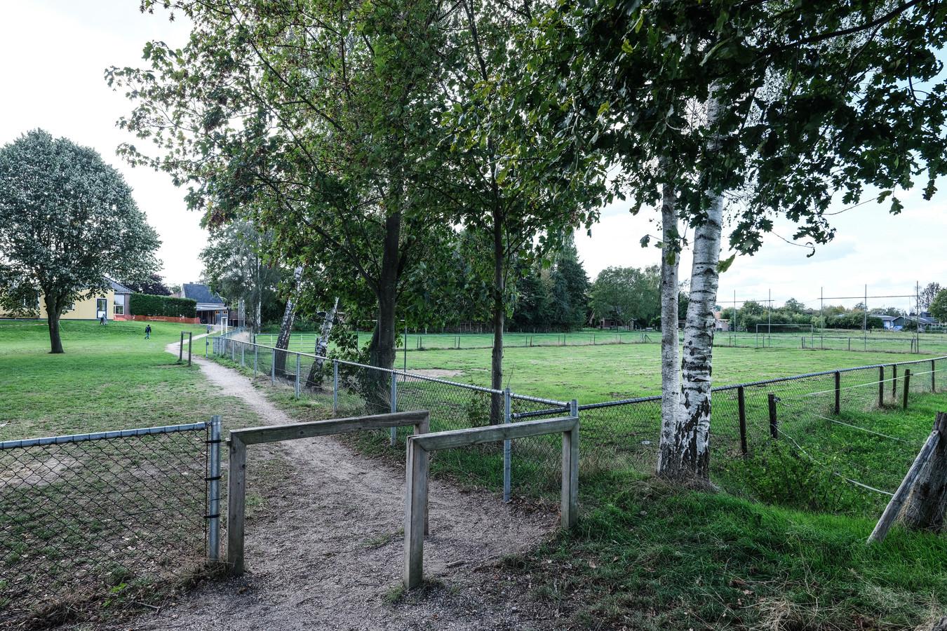 Op dit veldje in Halle mag niet meer gevoetbald worden.  Foto: Jan Ruland van den Brink