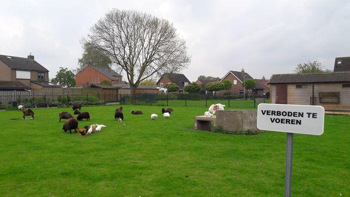De dierenweide aan de Amstelveenstraat in hartje Westdorpe.