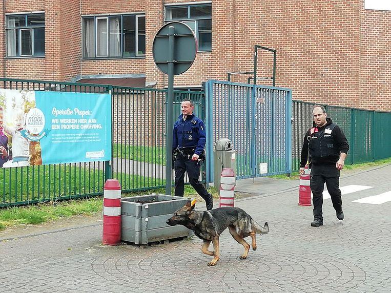 Een snuffelhond aan het werk bij de campus van De Prins in Diest.