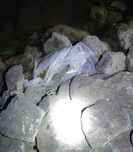 Dierenambulance rukt uit voor plastic zak langs Nederrijn