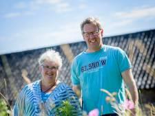 Bloemen plukken in Haaksbergen kan weer: 'Ze zijn groter dan vorig jaar'