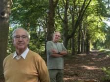 Dit is waarom 338 stokoude beuken aan het 'mooiste laantje van Nederland' gekapt moeten worden