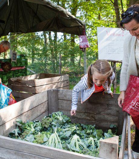 Altijd al boer willen zijn? Dit is je kans: Herenboerderijen willen naar regio Oldenzaal