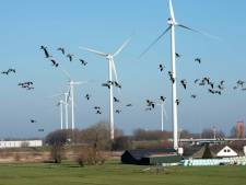 Een week vol tegenwind voor Utrechtse windmolens; staan de plannen nu op losse schroeven?