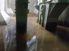 Gevreesd water sijpelt toch kelder van diervoeder Havens binnen, maar schade lijkt mee te vallen
