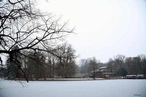 Foto van Sneeuw zorgt voor idyllische beelden