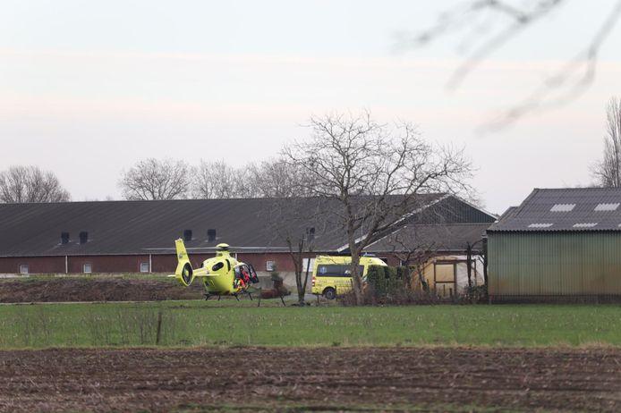De traumahelikopter bij de boerderij in Nistelrode.