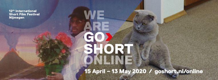 De twaalfde editie van Go Short-kortfilmfestival van Nijmegen werkte in alle stilte aan een online-alternatief. Beeld RV