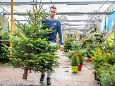 College wil niet meer plaatsen voor kerstbomenverkoop