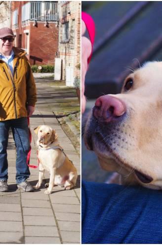 """Na dood van twee blindengeleidehonden is Hilaire (62) blij met opvolger Arrow: """"Hij begrijpt alleen Frans. Ik moet hem nog Nederlands leren"""""""