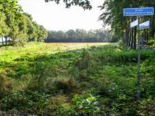 Vrijheidsbos wijkt voor Japanse duizendknoop, monumentbomen worden elders geplant