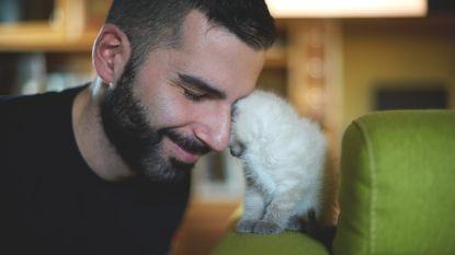 Onderzoek: mannen met een kat raken minder snel aan een date