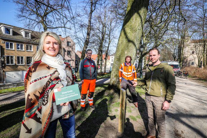 Niet enkel nieuwe naambordjes voor de bomen in Brugge, maar sommige krijgen ook een QR-code.