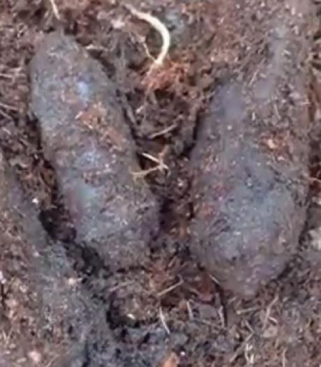 Verrassing tijdens boogschietwedstrijd: schutters vinden ruim 100 granaten