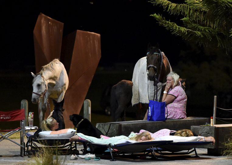 Een Australische familie slaapt uit voorzorg buiten tijdens een bosbrand. Beeld reuters