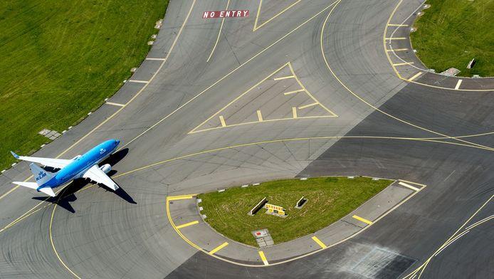 Ganzen rond Schiphol hinderen het luchtverkeer.