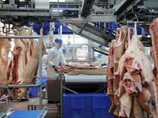 Honderden arbeidsmigranten naar Boxtel: waar die moeten wonen? Geen idee