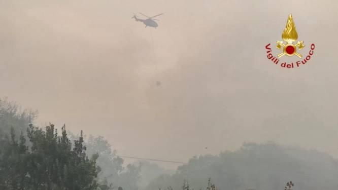 Hevige bosbranden op Sardinië: Frankrijk en Griekenland sturen blusvliegtuigen