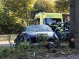 Auto botst tegen verkeersbord en boom in Veghel
