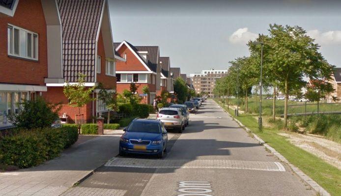 De drempels lagen tot vorig jaar tot aan de stoep, is ook te zien op Google Streetview.